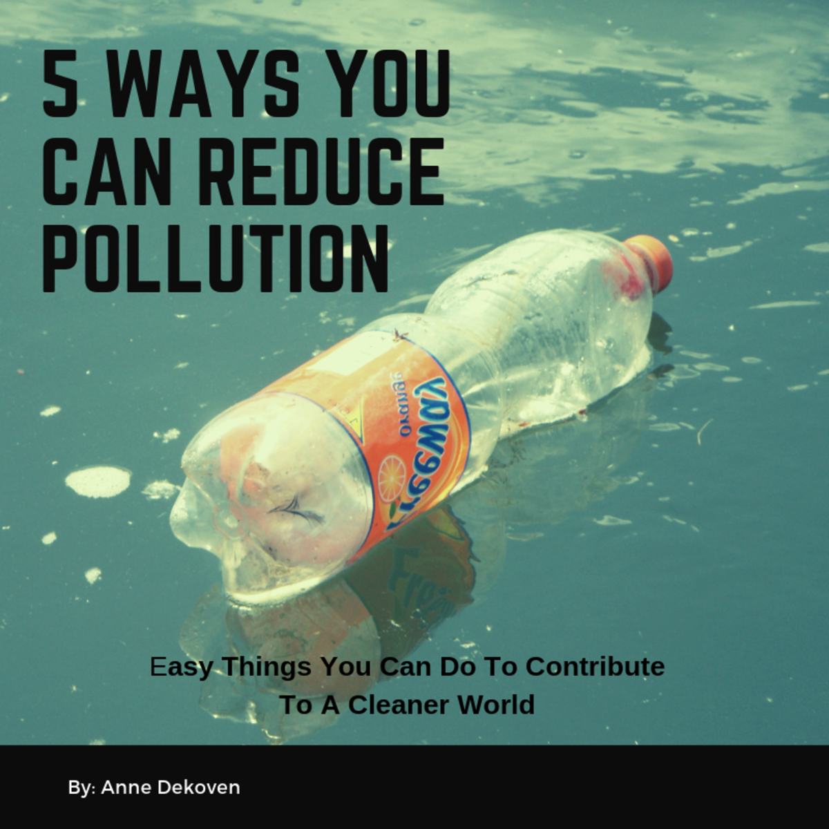 5 Easy Ways You Can Help Reduce Pollution