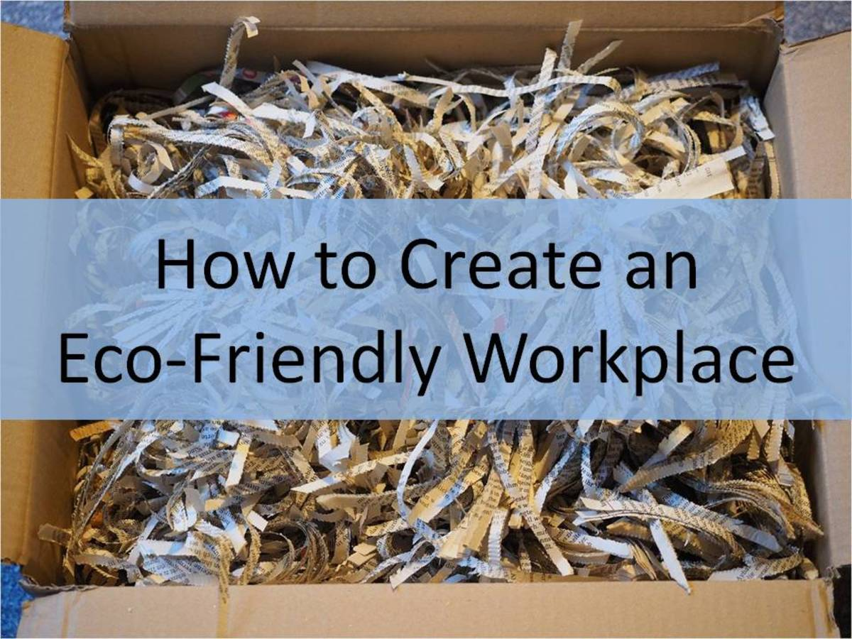 How to Create an Eco-Friendly Workplace