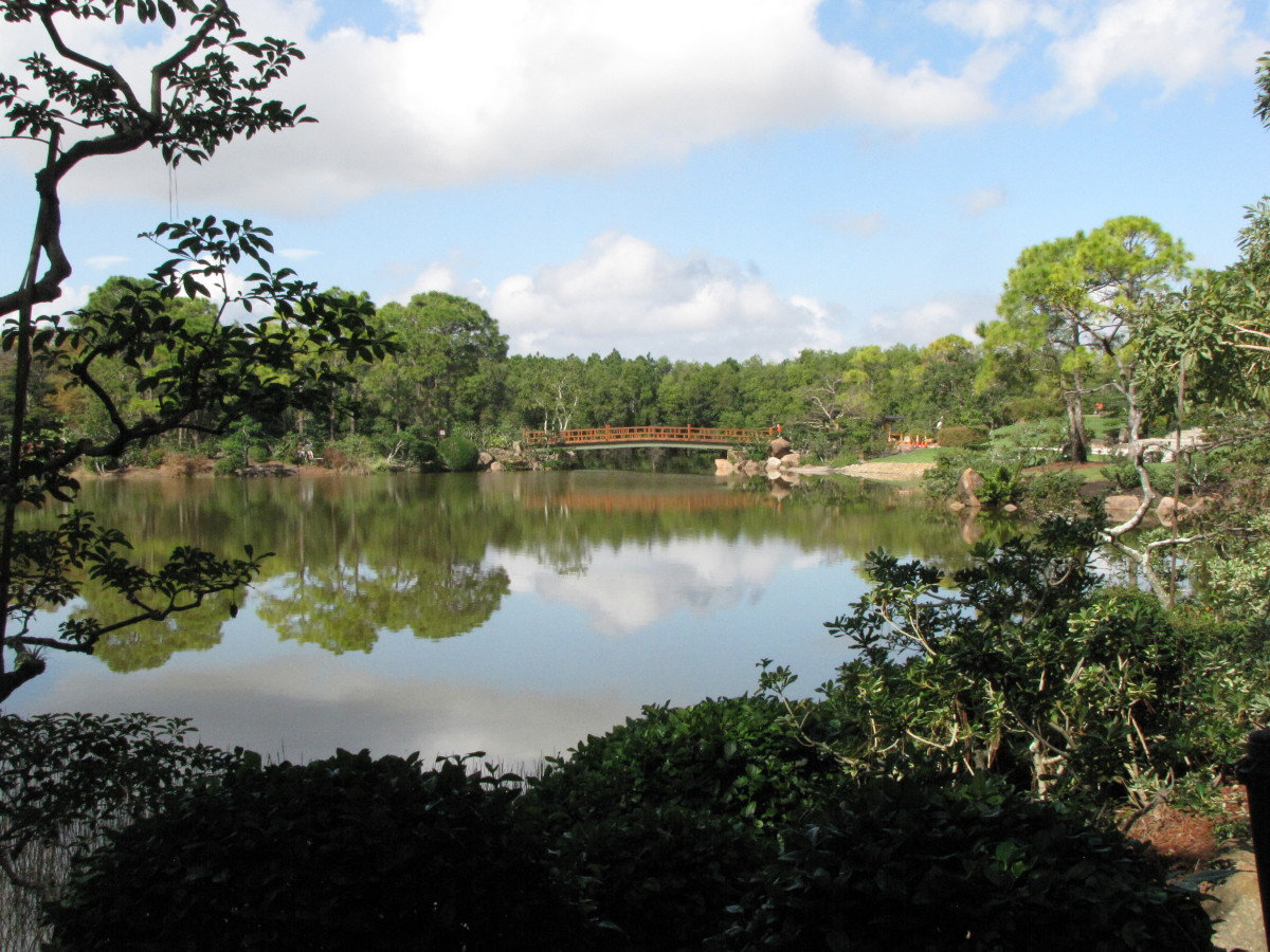 Visiting the Morikami Japanese Gardens and Museum in Delray Beach, Florida