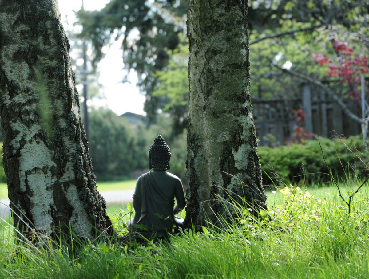 Mindfulness Meditation: A Quick Guide for Beginners