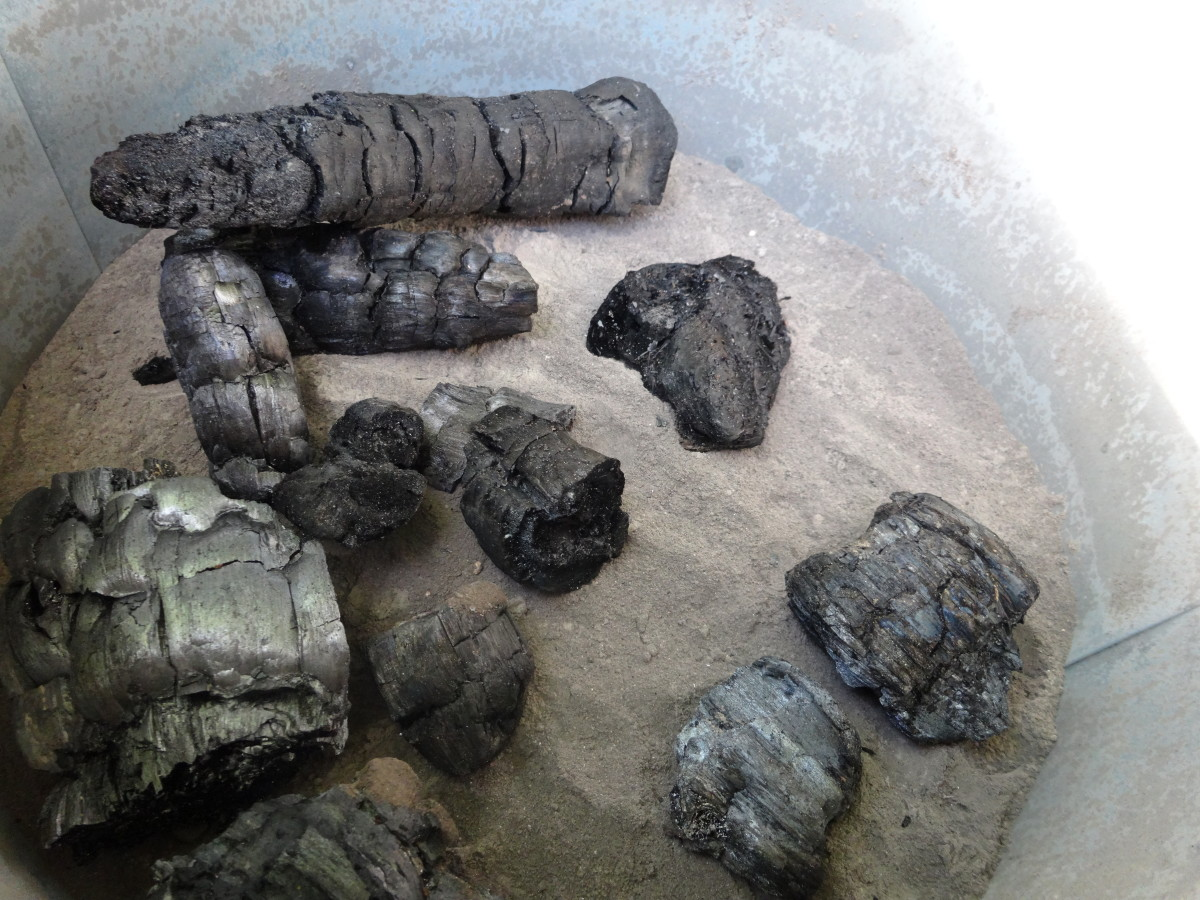 4 Uses for Charcoal and Ash (With Photos)