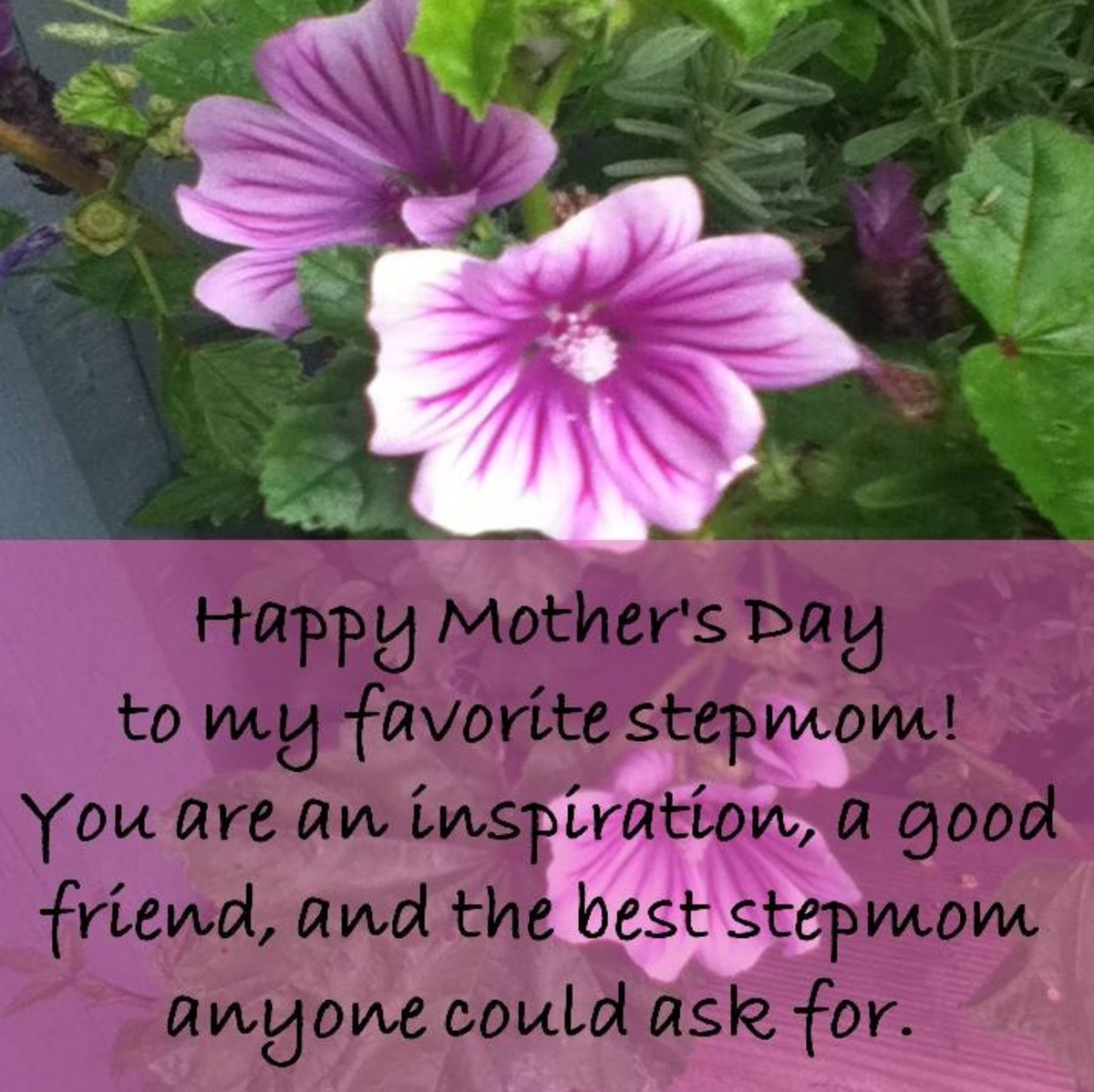 Card Greetings and Gift Ideas for Your Stepmother on Mother's Day