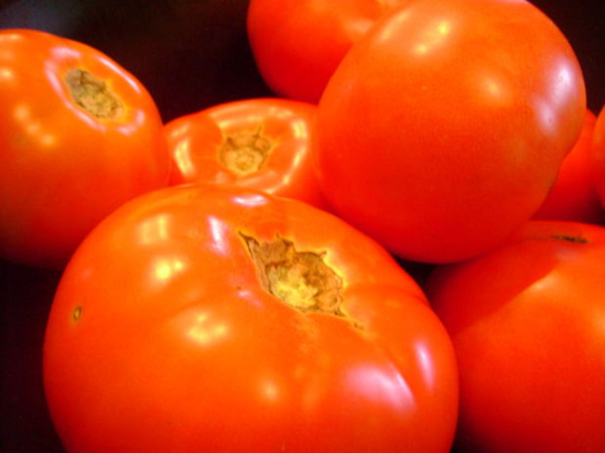 How to Get Lots of Tomatoes