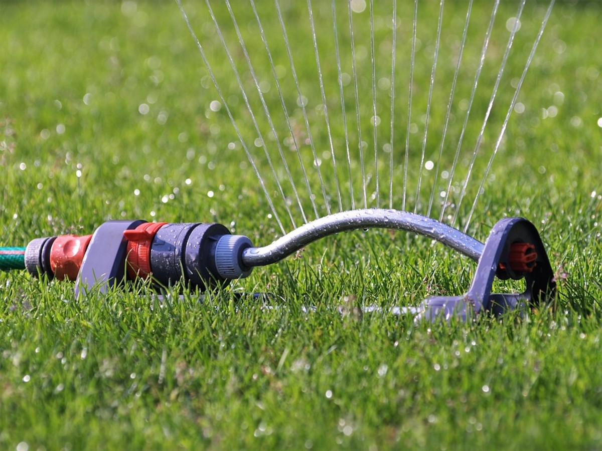 how-to-water-your-garden