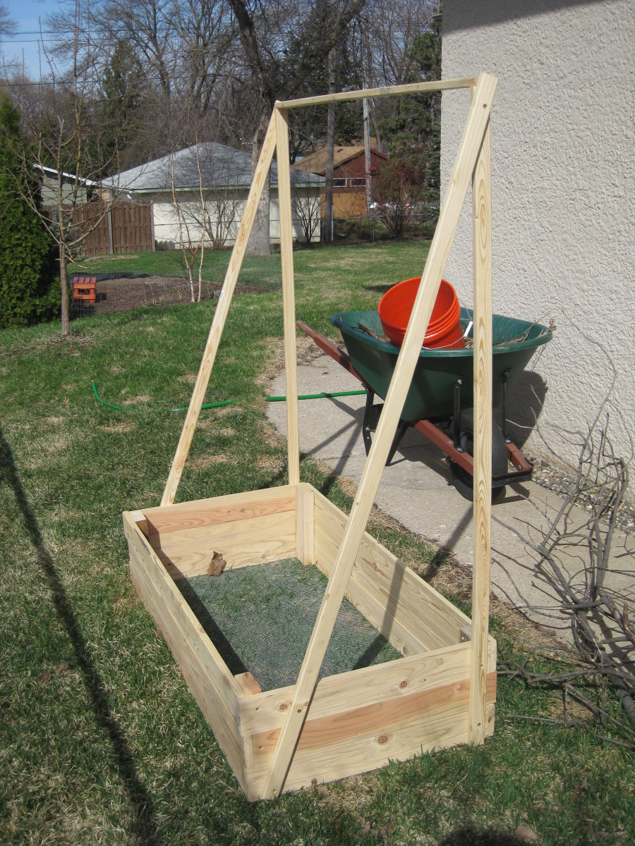 A Container With A Simple Frame To Grow Cucumbers On.