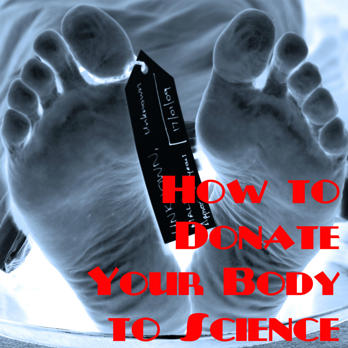Leave a Legacy of Medical Education: How to Donate Your Body to ...