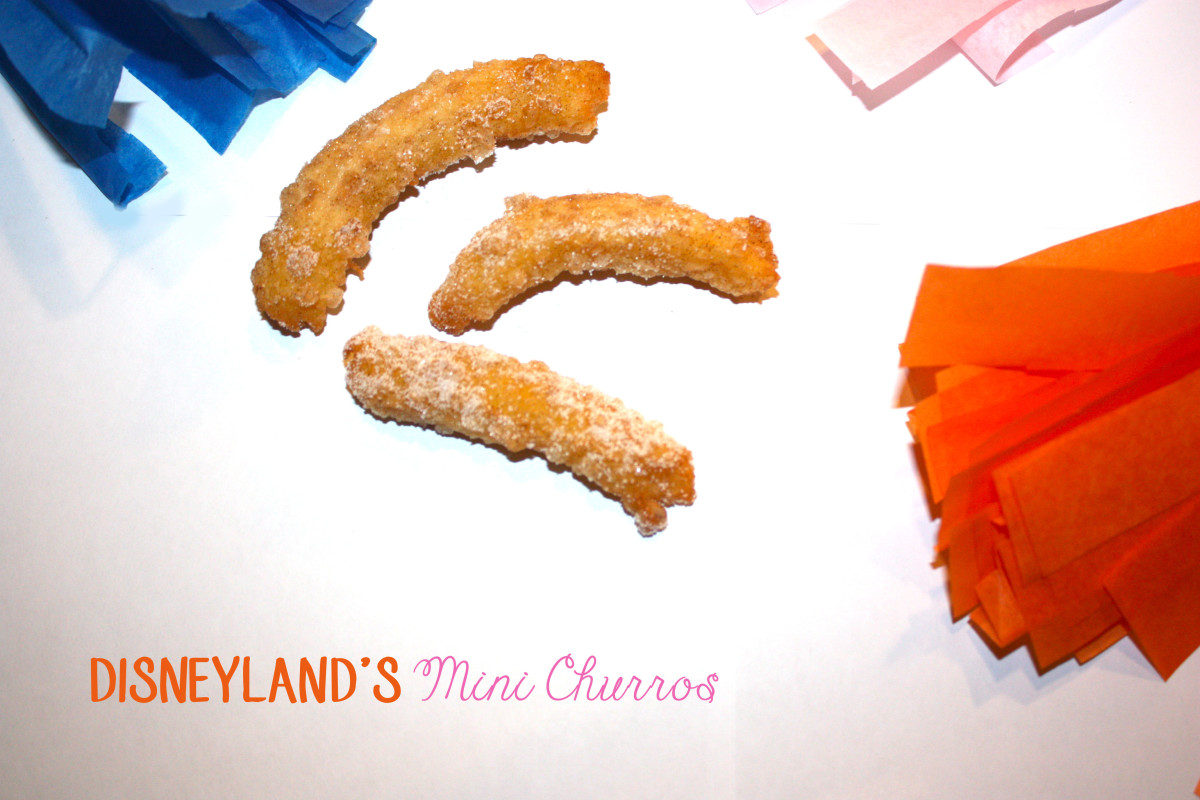 Disneyland's Mini Churros