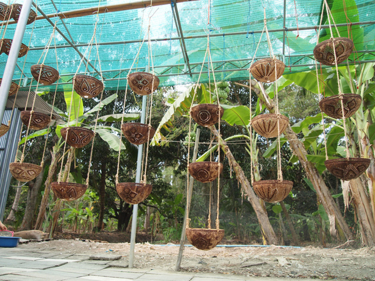 Baskets made of coconut shells.