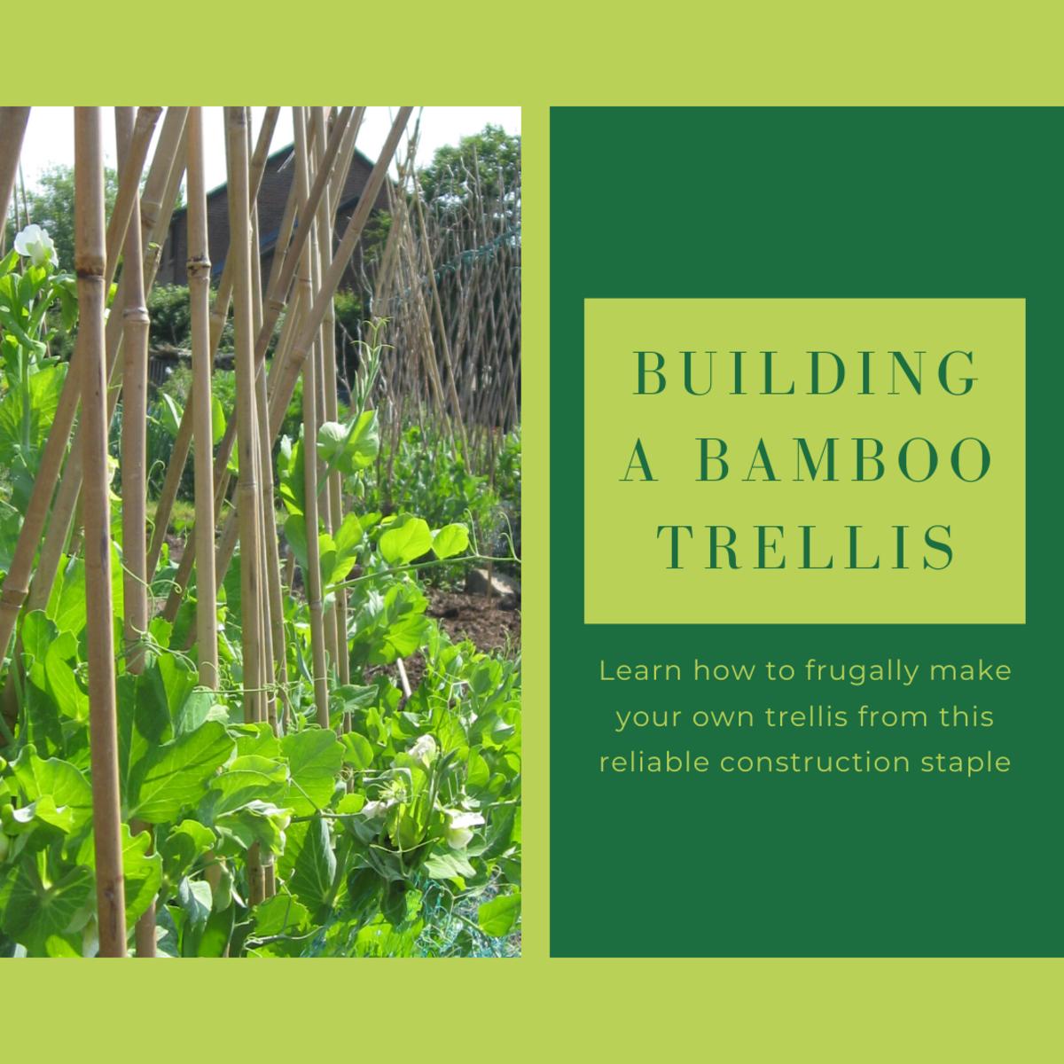 How to Frugally Build a Bamboo Garden Trellis