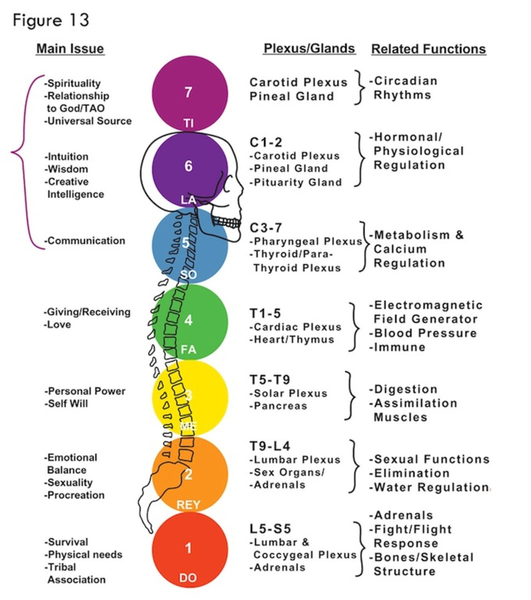 How Chakras Work: The Development of Physical/Mental Disorders and Disease