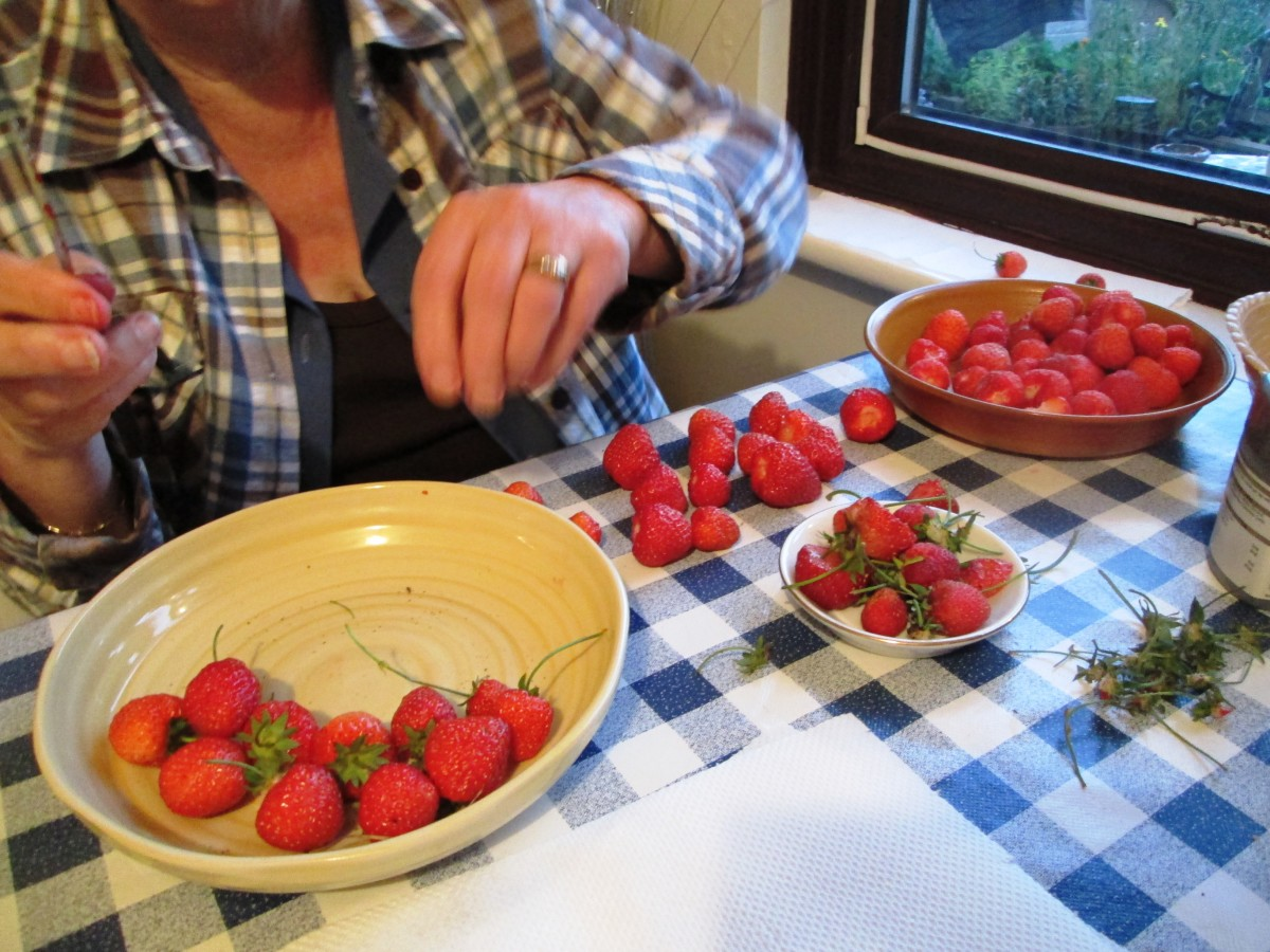 Only pull off the stork and wash the strawberries just before you intend to eat them or use them for making jam.