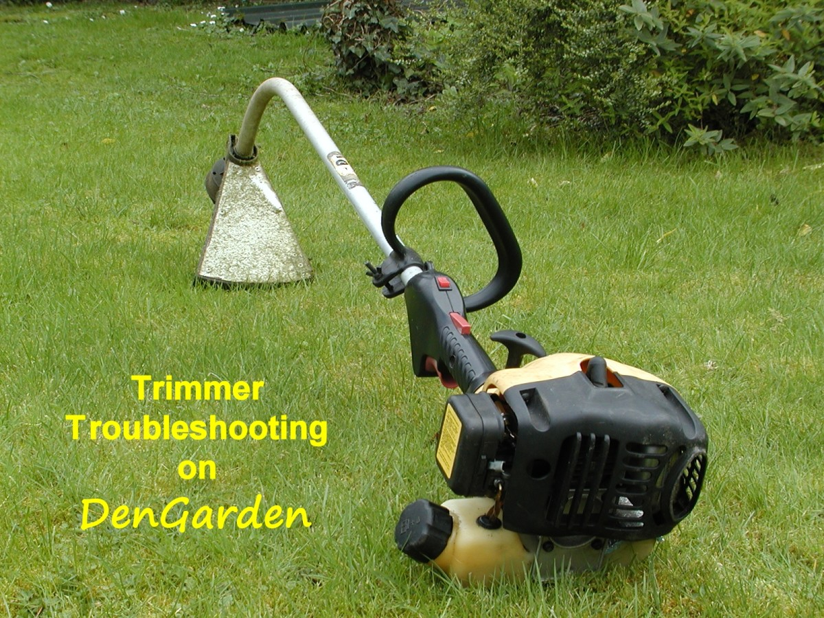 String Trimmer (Strimmer) Won't Work: 2-Stroke Engine and