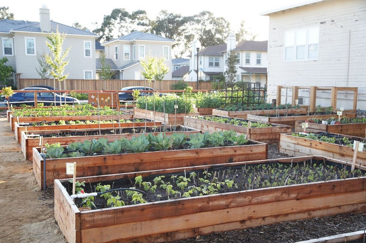 how to build a raised garden instrucables