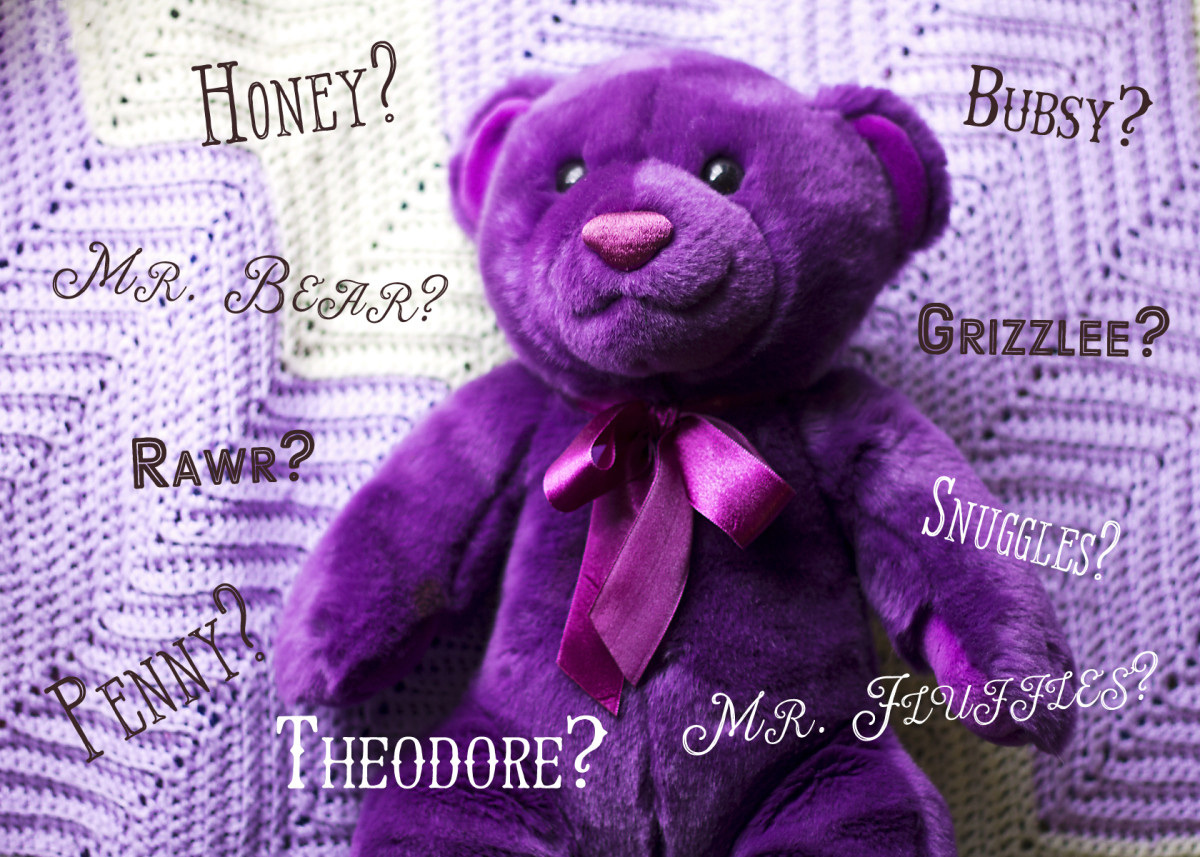 Cute names to call your teddy bear