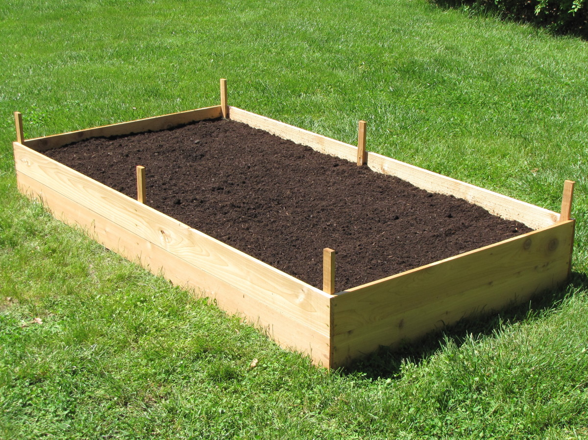 How to build a cedar raised garden bed dengarden for Diy patio bed