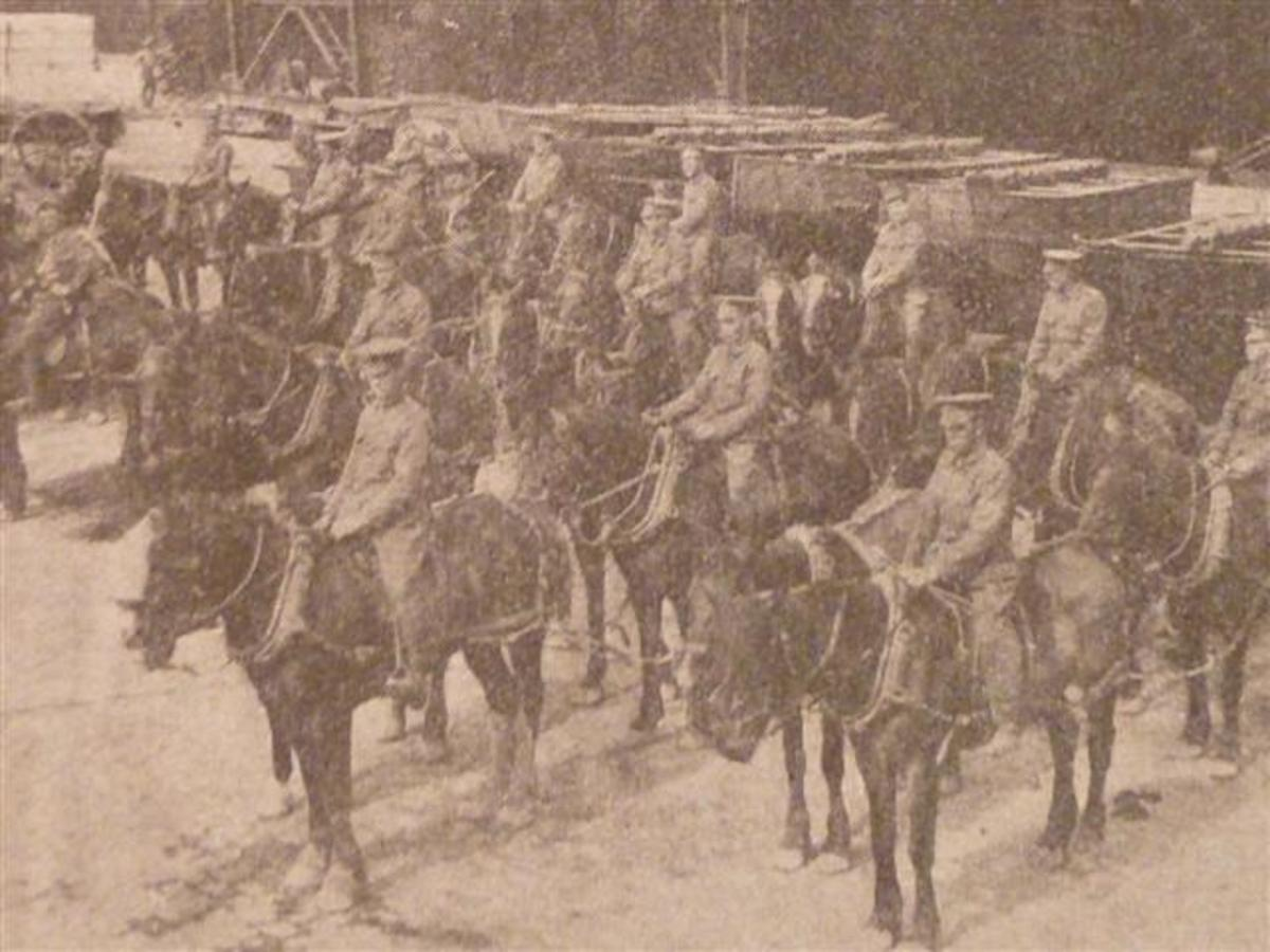 The British Expeditionary Force in World War I