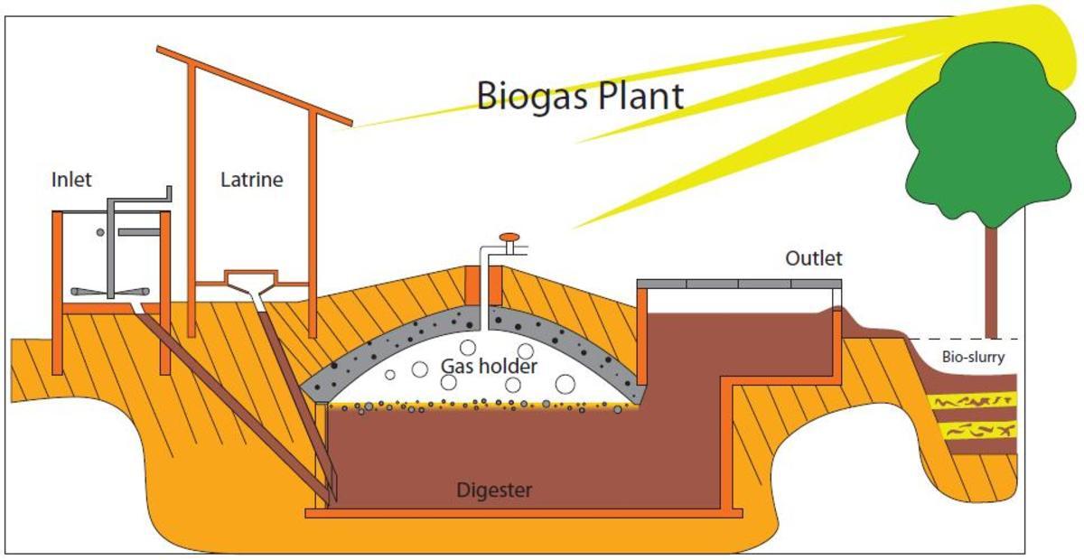 Bio-Digester vs Composter