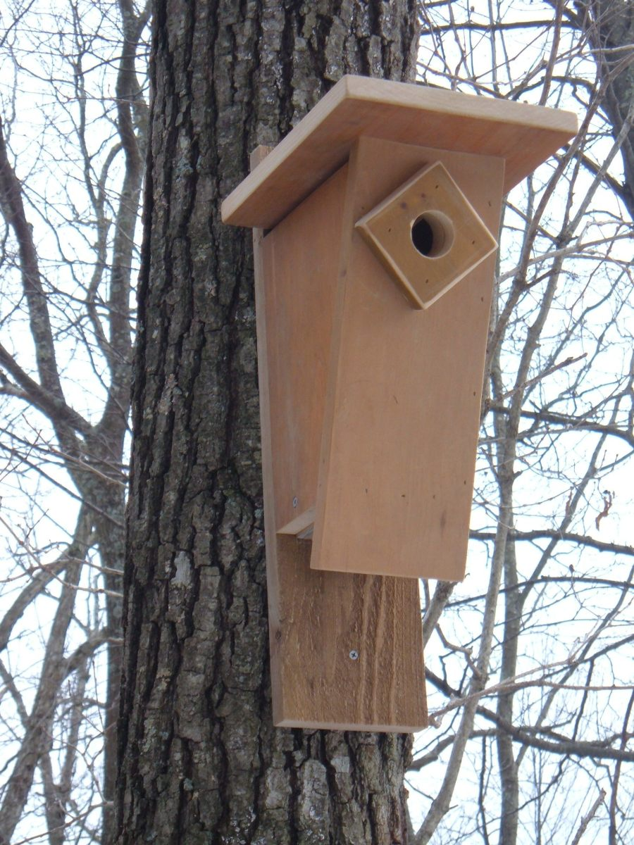 How to Build a Peterson Slant-Front Style Bluebird House