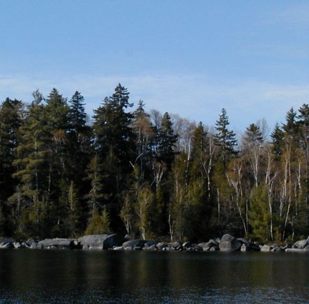 Spring Fishing In Maine: Trolling for Landlocked Salmon