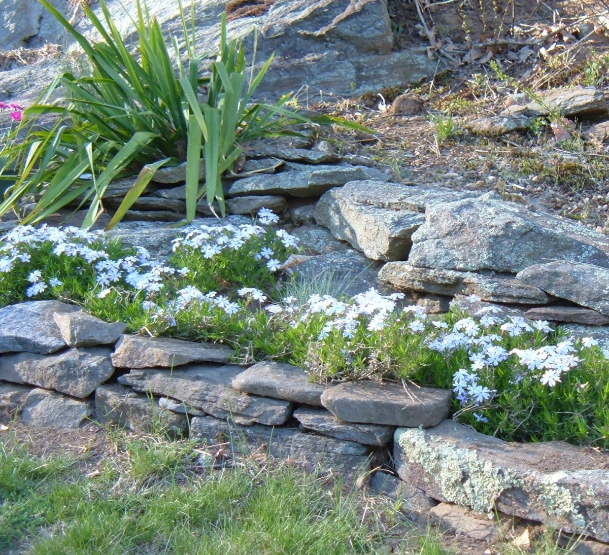 How to Design a Rock Garden: Landscaping With Rocks and Boulders