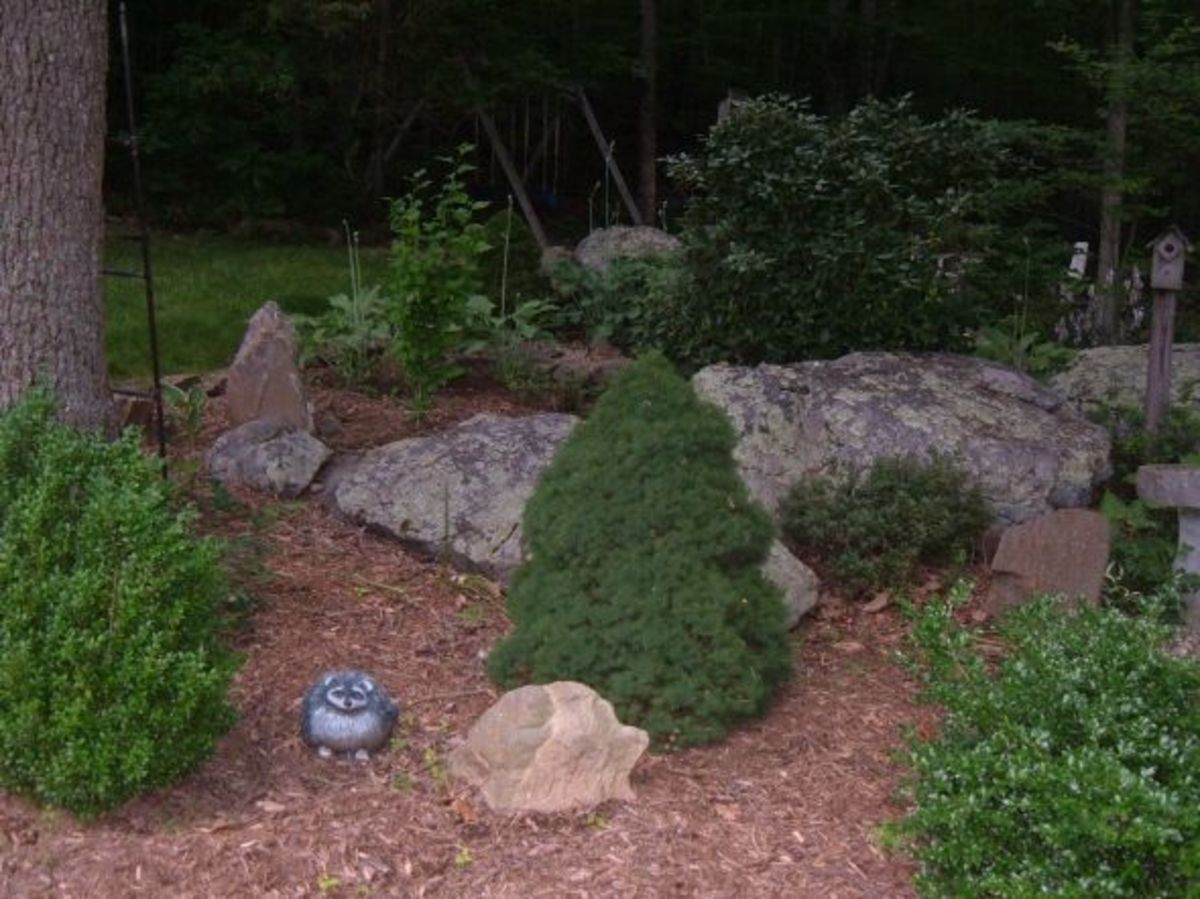 Designing a rock garden landscaping with rocks and for Rock garden designs shade