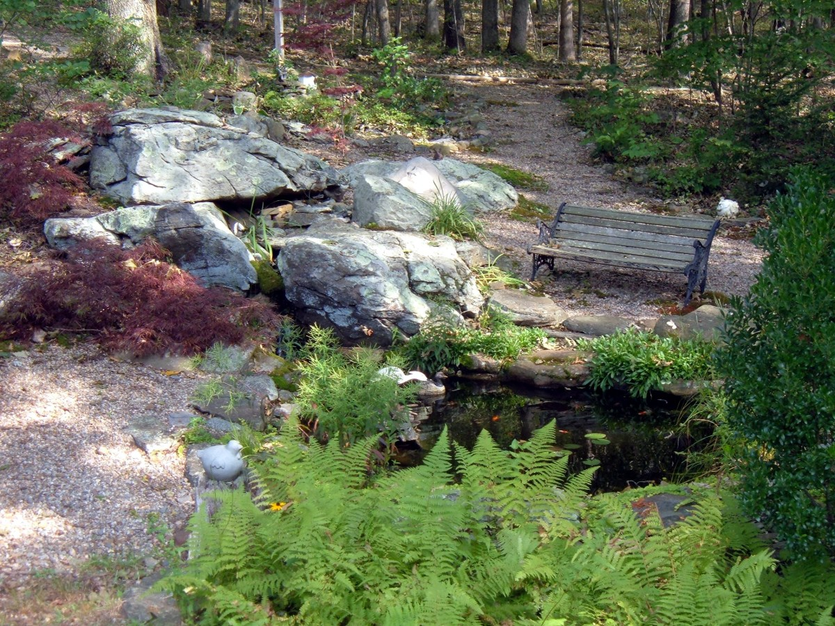 We designed our pond and stream around these hunks of granite.