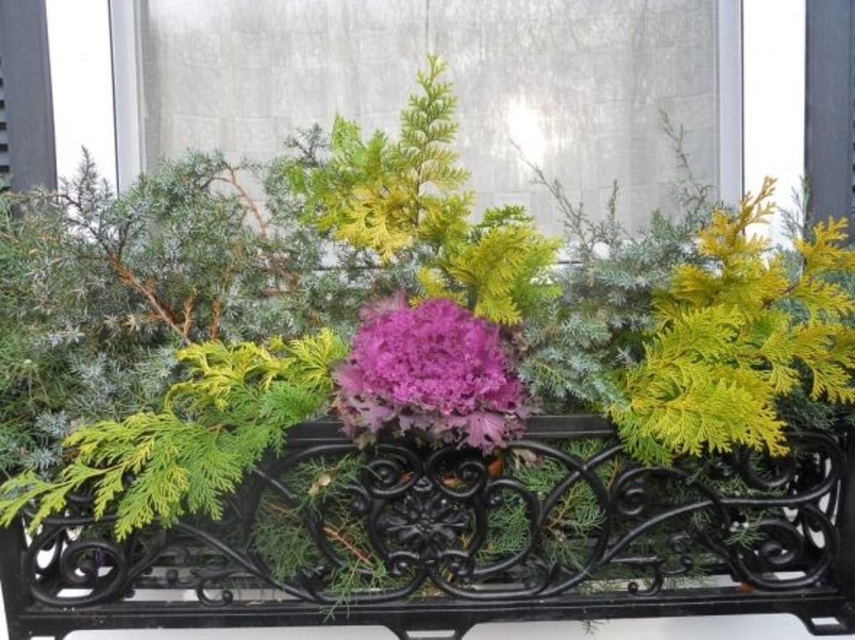 Christmas-Window-Box