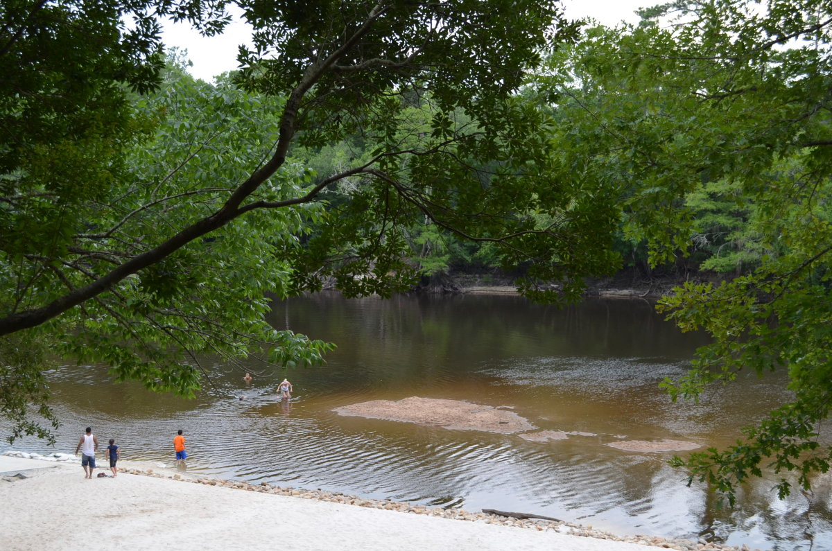 Edisto River Float: Access Points