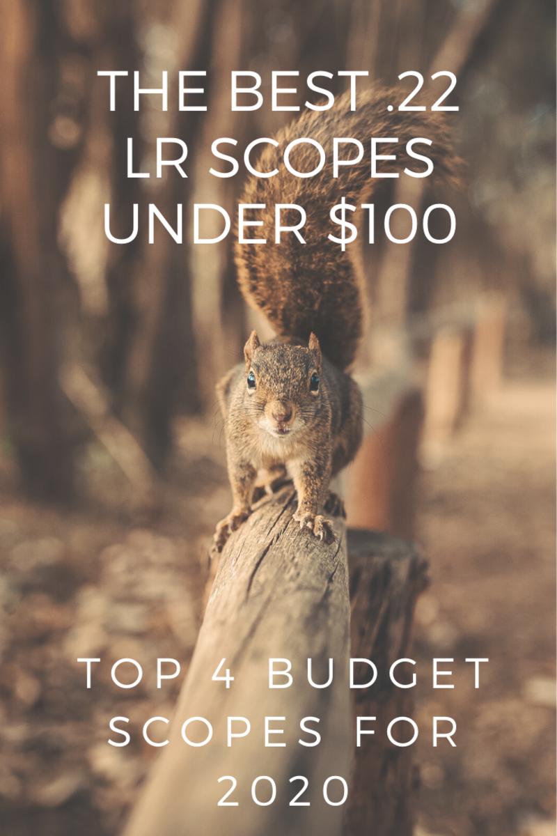 Best 22 LR Rimfire Scopes Under $100 for 2020