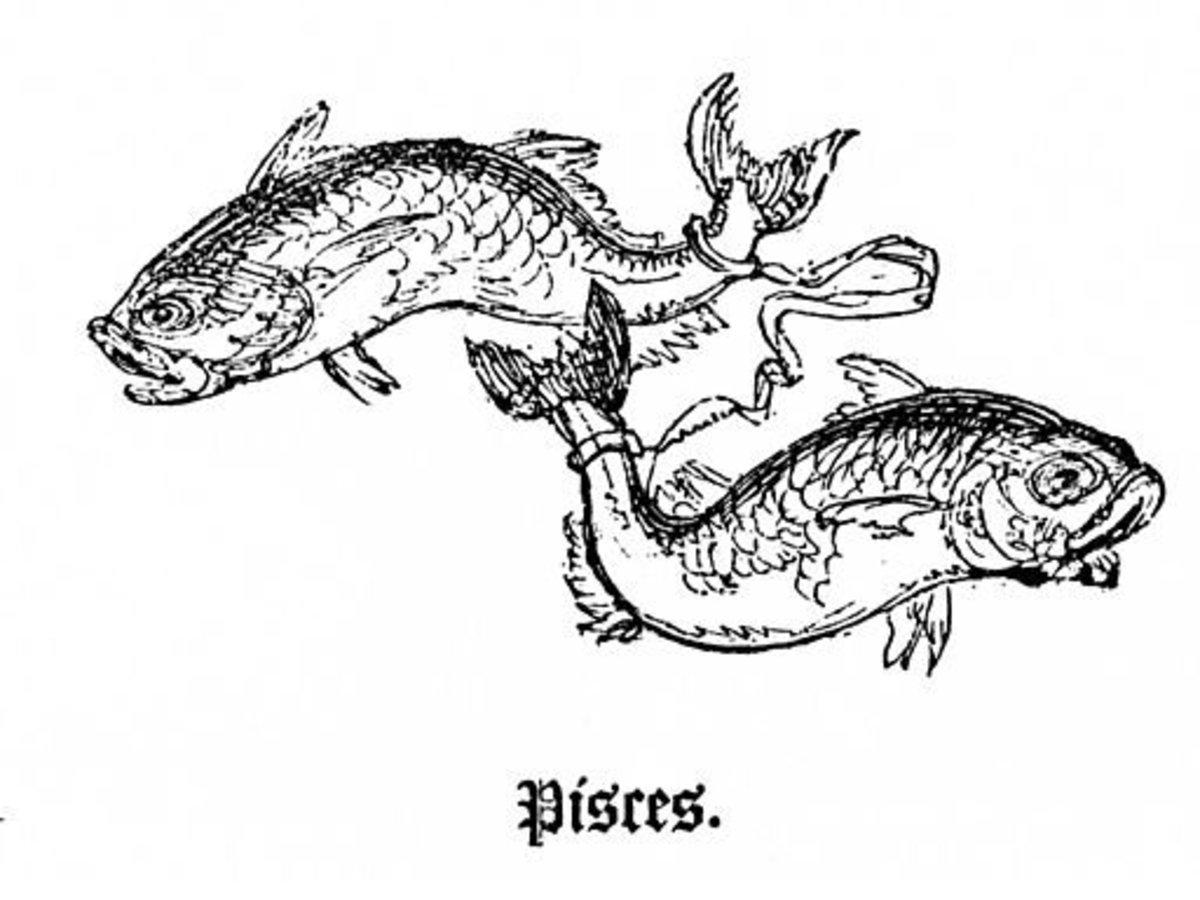 Venus in the Sign of Pisces   PairedLife
