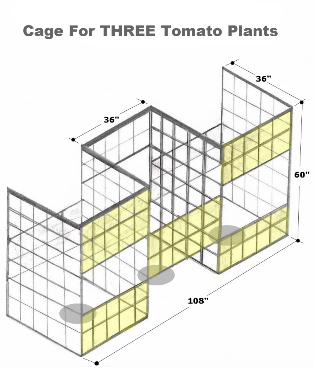 Drawing by Robert Kernodle of a homemade three-compartment tomato cage.