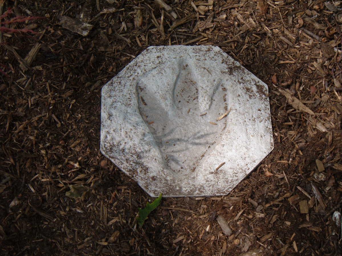 Dino Print Stepping Stone