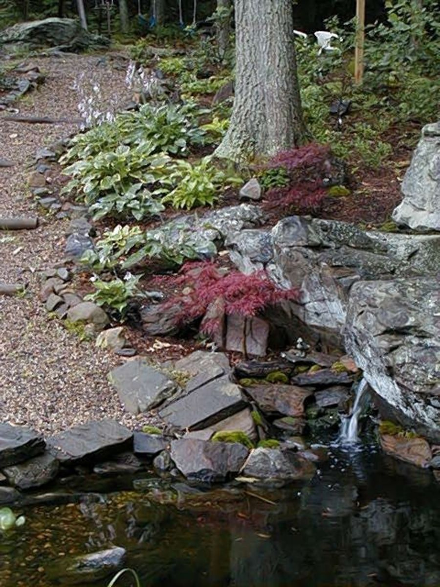 Rock Landscaping Under Trees : Author rock gardens designing a garden landscaping with rocks