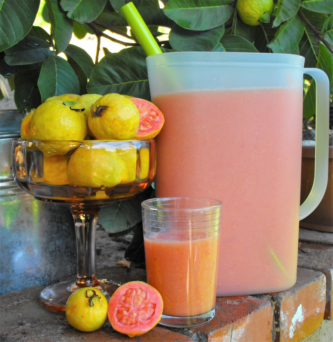 How to Make Fresh Pink Guava Nectar