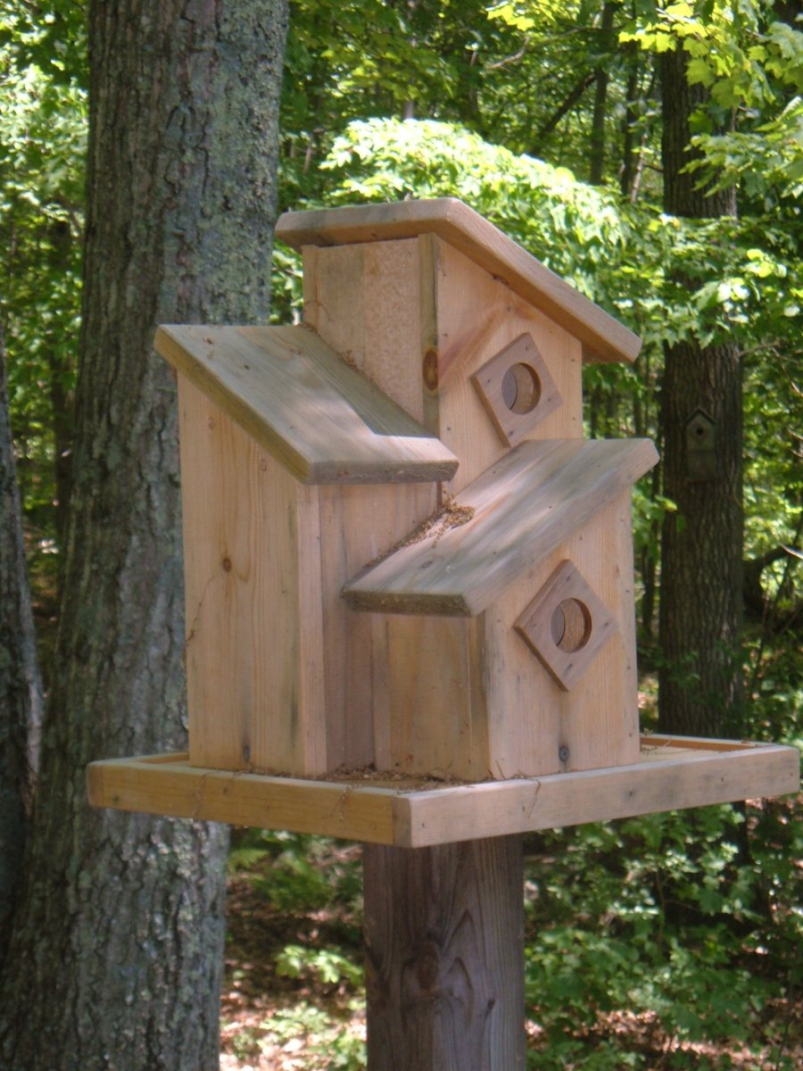 Making Wooden Birdhouses: Birdhouse Ideas, Plans and Designs ... on wooden bird house plans, martin bird house plans, construction bird house plans, easy bird house plans, small bird house plans, simple bird house plans, bird house dimensions plans, woodpecker bird house plans, swallow bird house plans, printable bird house plans, wren bird house plans, jay bird house plans, mansion bird house plans, flicker bird house plans, northern cardinal bird house plans, chickadee bird house plans, side mount bird house plans, house finch bird house plans, church bird house plans,