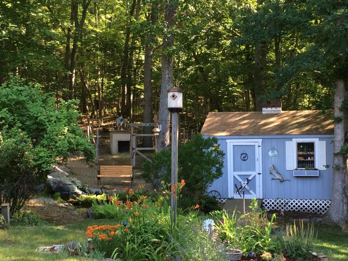 Our Backyard Certified Wildlife Habitat
