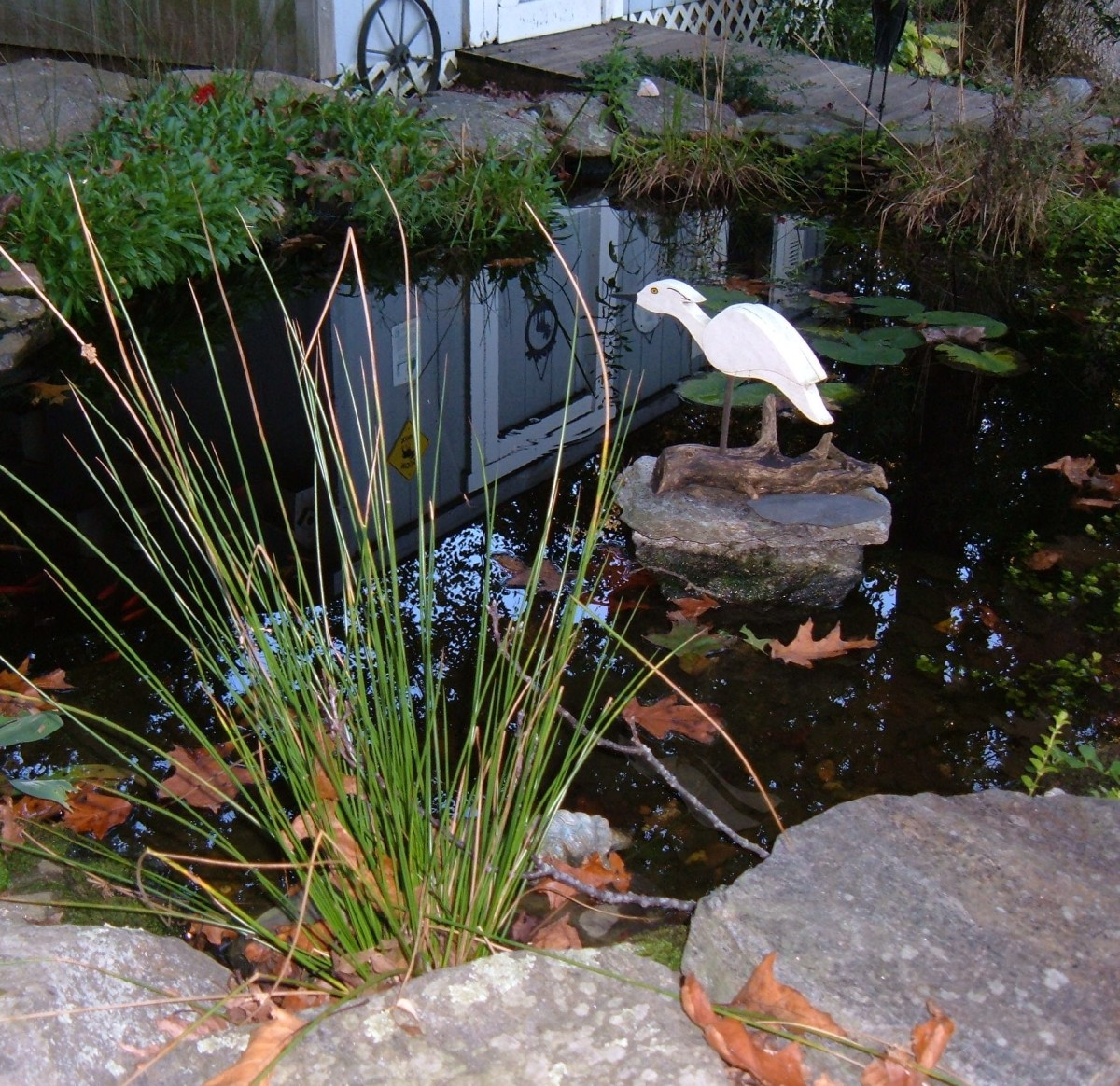 When the leaves fall, it's time to get the pond ready for winter.