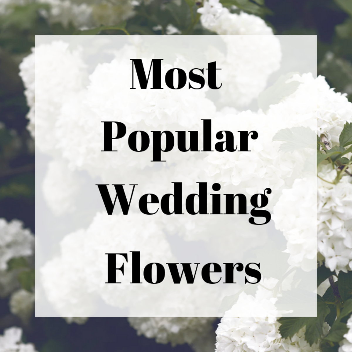 10 Of The Most Popular Wedding Flowers And What You Should