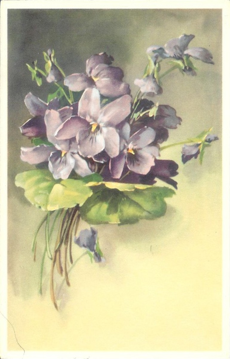 8 Vintage Alfred Mainzer Flower Postcards