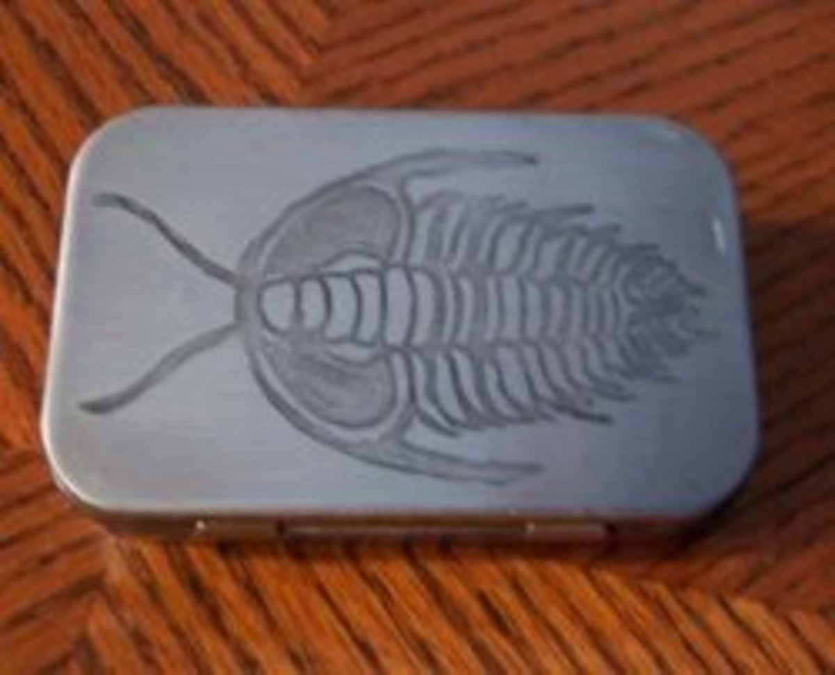 A trilobite etched into an Altoids tin