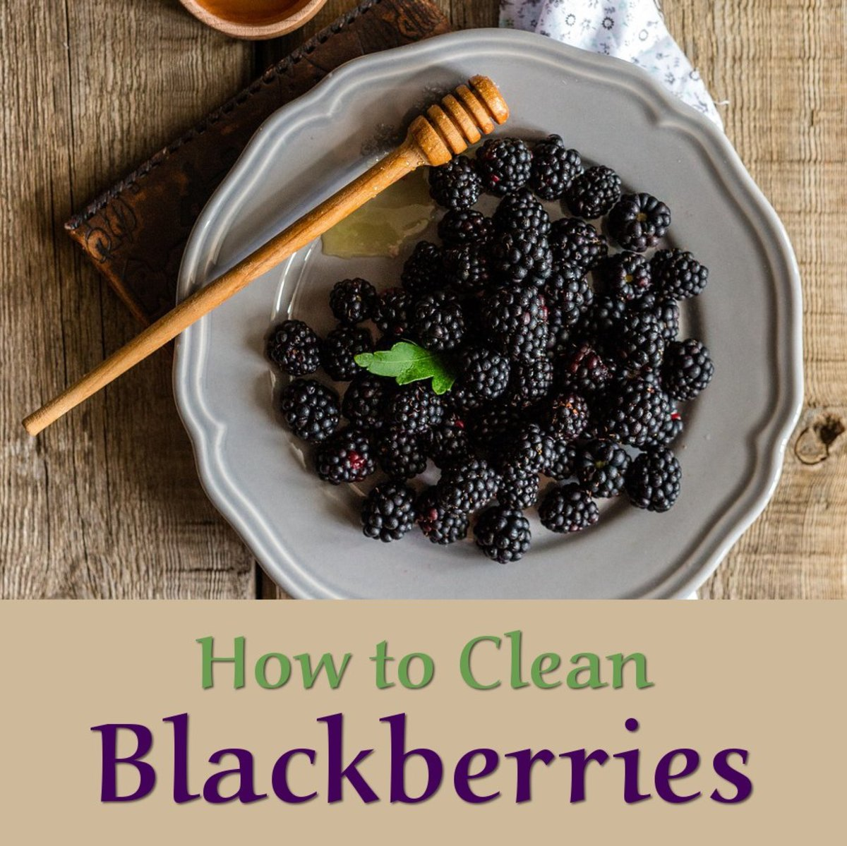 How to clean blackberries after picking them. Tips on getting these fruit really clean without ruining them. Plump juicy blackberry fruit are wonderful for delicious puddings, drinks and treats.