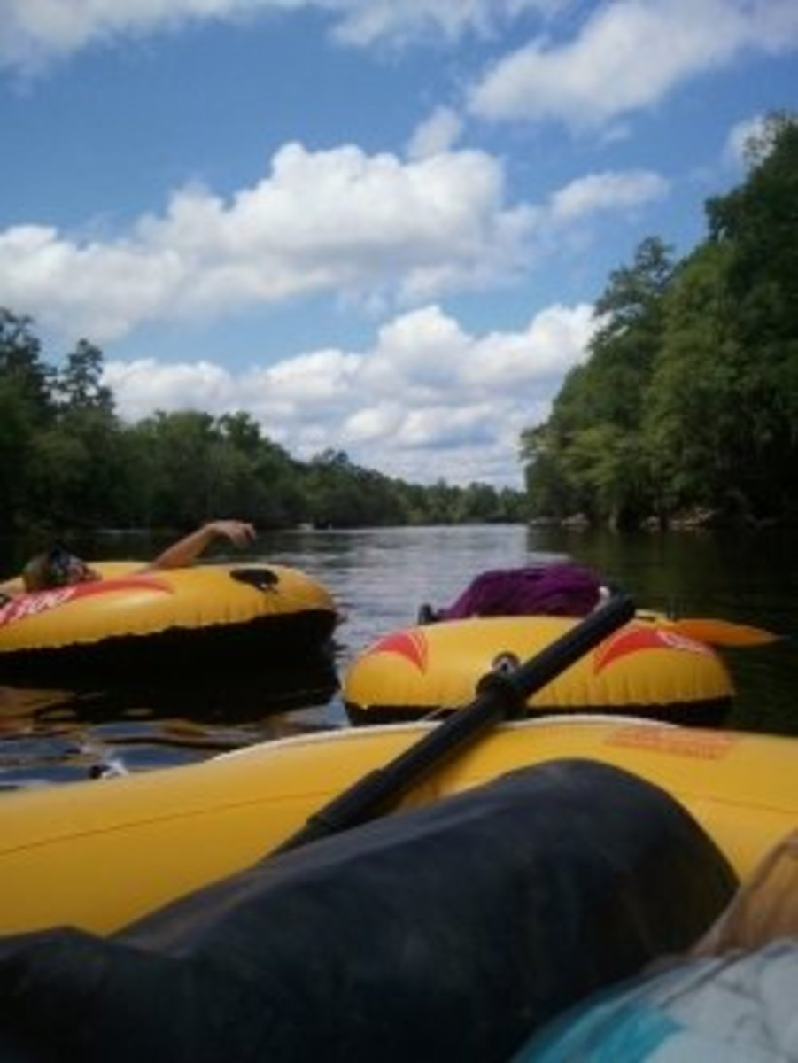 Floating the Edisto River!