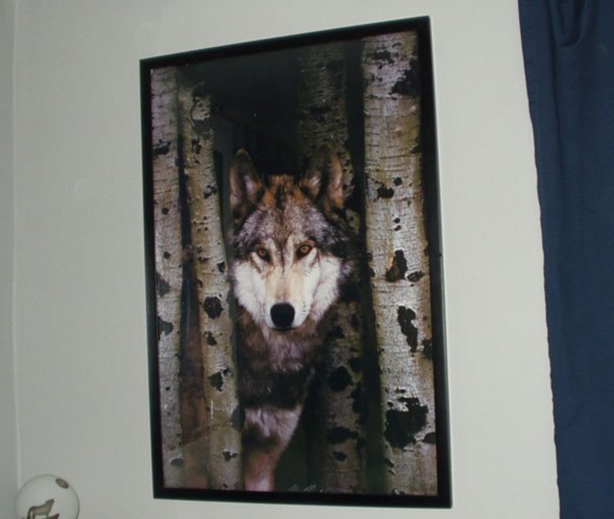 Use a wolf poster to decorate your party room.