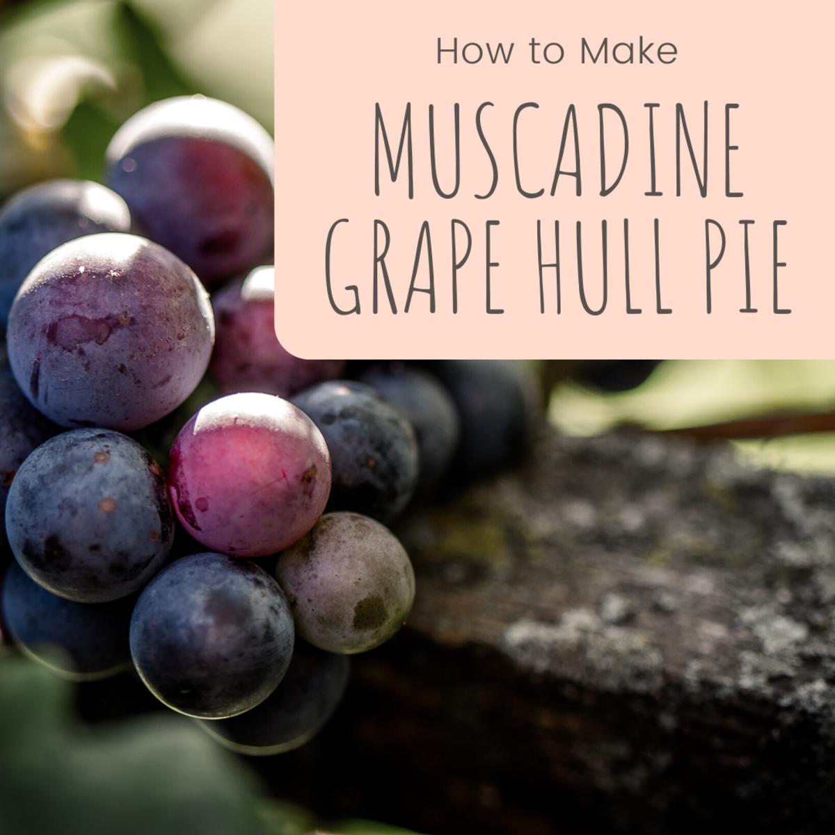 Muscadine Grape Hull Pie