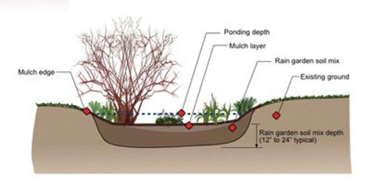 A simple rain garden plan.