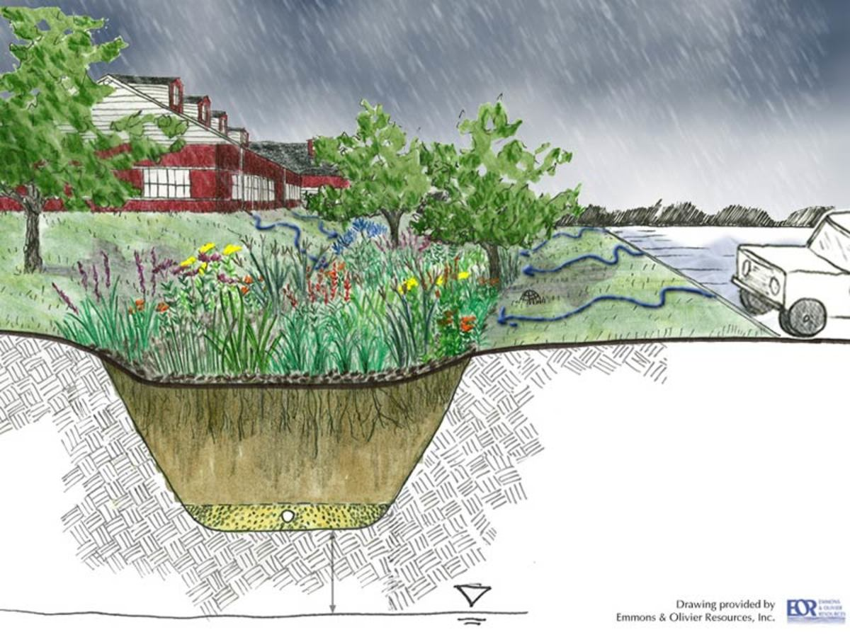 A cross-section diagram of a rain garden.
