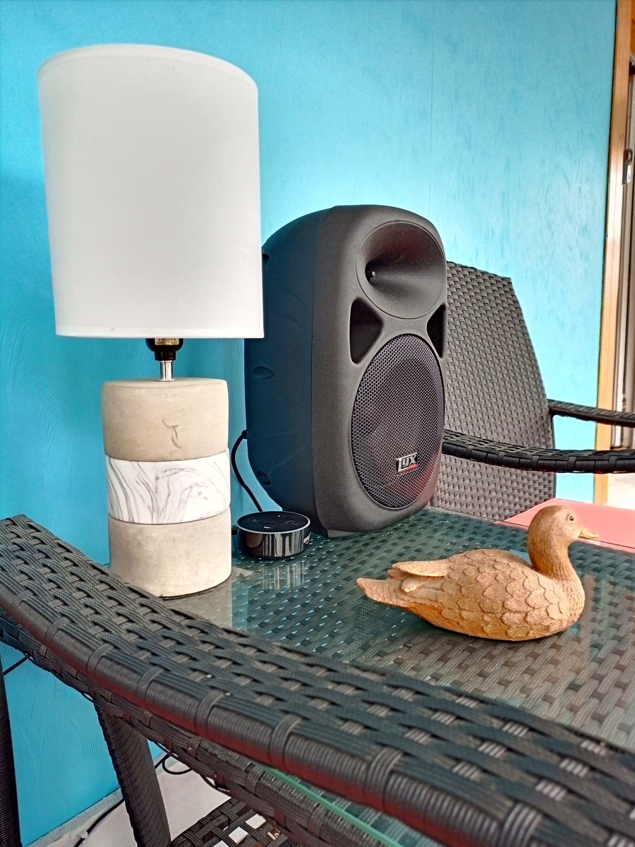 Review of the Lyxpro Portable Pa System