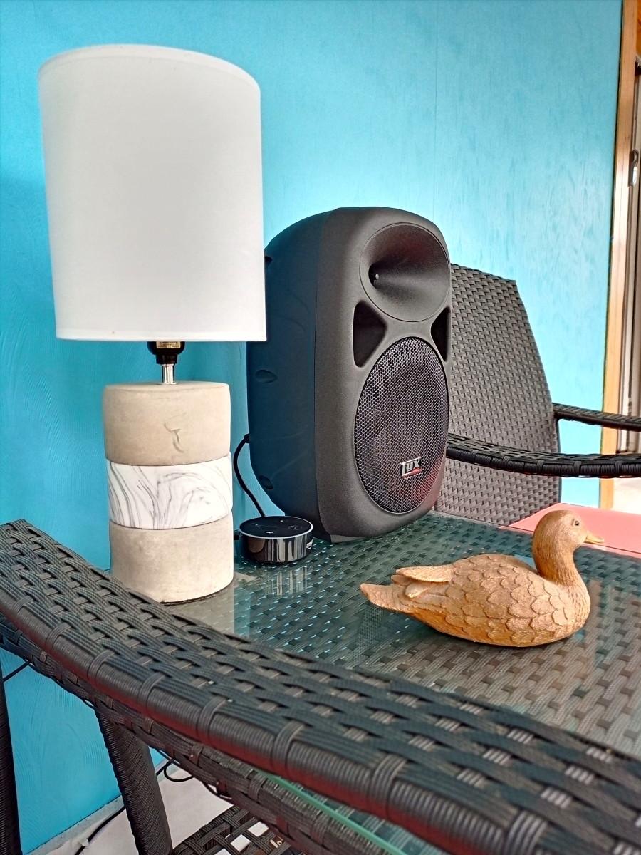 LyxPro SPA-8 PA speaker