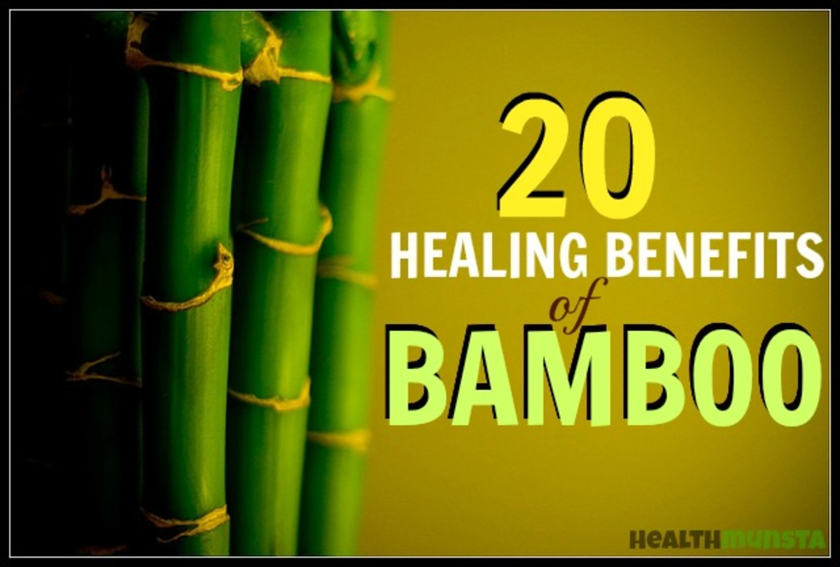Discover 20 healing benefits of bamboo.