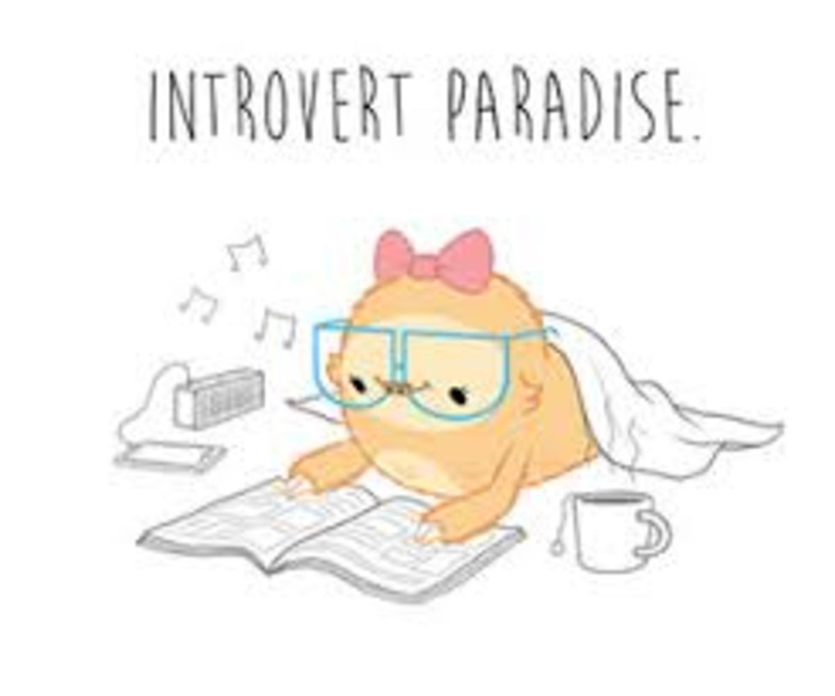 A Guide to Understanding Asocial Introverts | Owlcation Десоциализация
